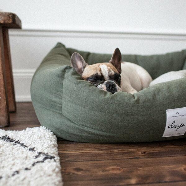 En hund av rasen fransk bulldog ligger och sover i en khakigrön rektangulär hundbädd