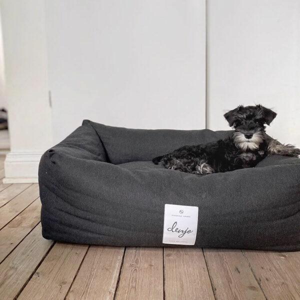 En grå hund av rasen Schnauzer ligger i en rektangulär hundbädd med mörkgrå klädsel