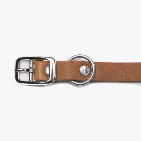 Spänne av rostfritt stål på hundhalsband i läder
